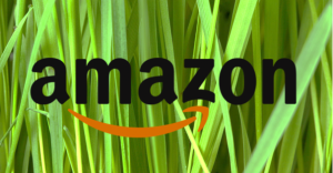 Amazon aims to be semi-climate neutral in 2030