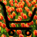 17% increase for Dutch online retail turnover